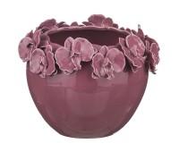 Орхидеи Слива ваза для 23см